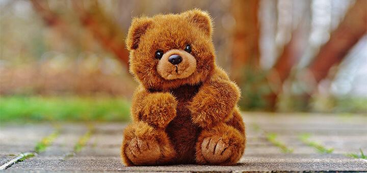 जानिये टेडी बेयर (Teddy bear) का आविष्कार कब, कहा और कैसे हुआ? When, where and how was Teddy Bear invented?