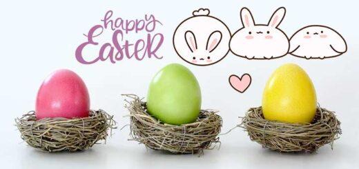 Why do we celebrate Easter Sunday? हम ईस्टर संडे क्यों मनाते हैं?